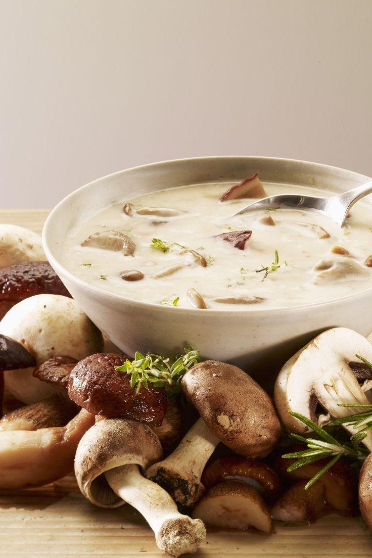 Photo of Kremalı Mantar Çorbası