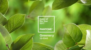 2017 Pantone Yılın Rengi: Yeşil