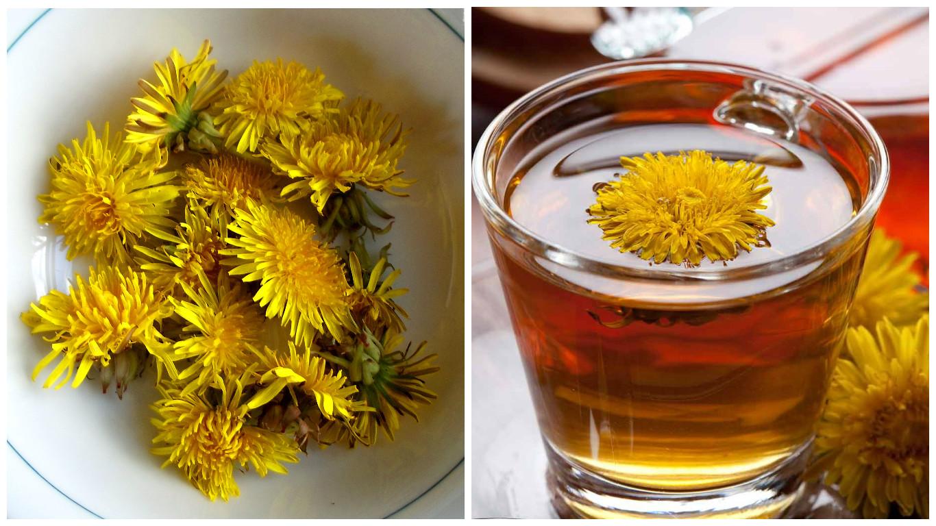 Kilo vermek için Karahindiba Çayı ve 3 etkili Faydaları